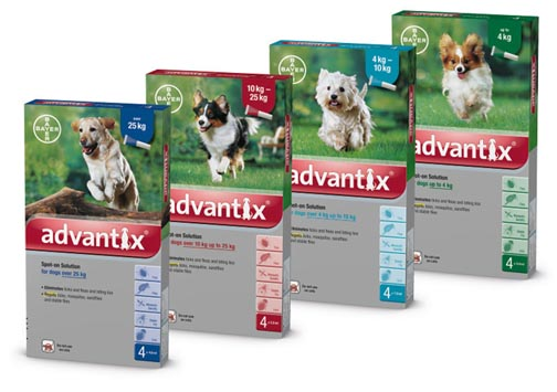 Advantix 1-4kg - Spot-on külső élősködők ellen kutyáknak
