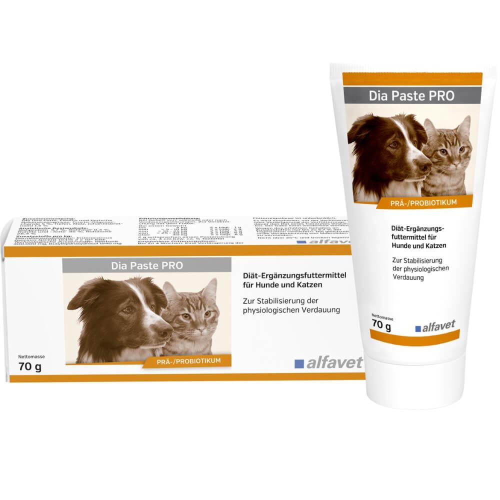 Dia Paste PRO – ízletes paszta hasmenés és egyéb akut bélrendszeri felszívódási zavarok mérséklésére kutyák és macskák részére